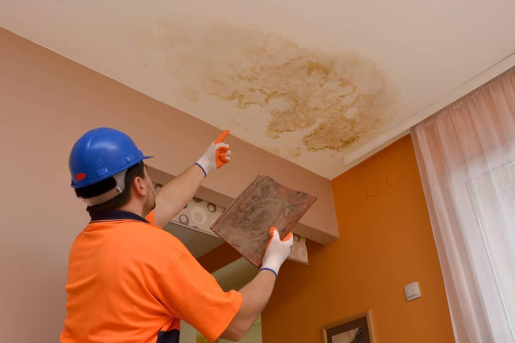 Water Damage Repair And Remediation