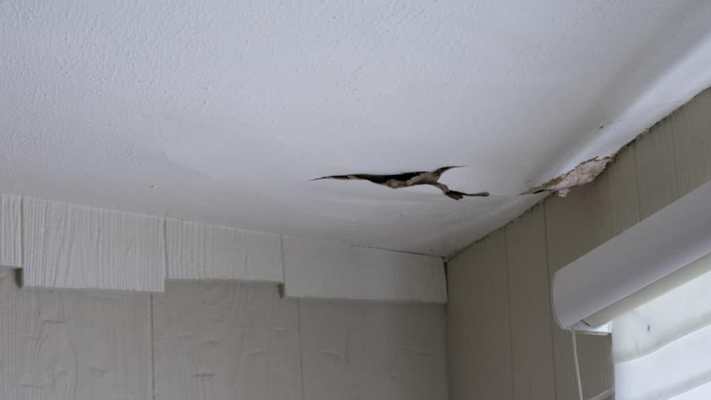 How to Find Hidden Water Damage in Your Home